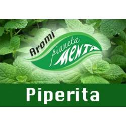 Aroma BlendFEEL - Menta Piperita