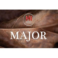 Aroma BlendFEEL - major - hiFEEL