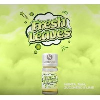 Aroma Super Flavor Fresh Leaves