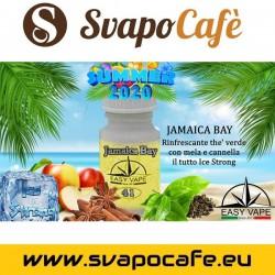 Aroma Easy Vape n.41 Jamaica Bay