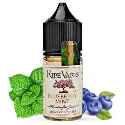 Aroma Blueberry 30ml - Ripe Vapes