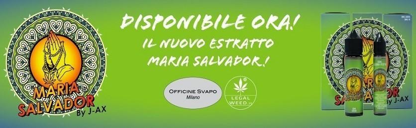 Liquido Maria Salvador by J-AX